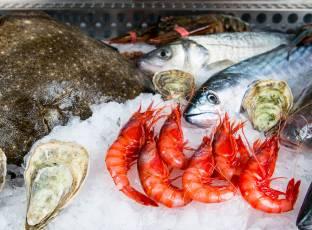 Platos La Marea Restaurante