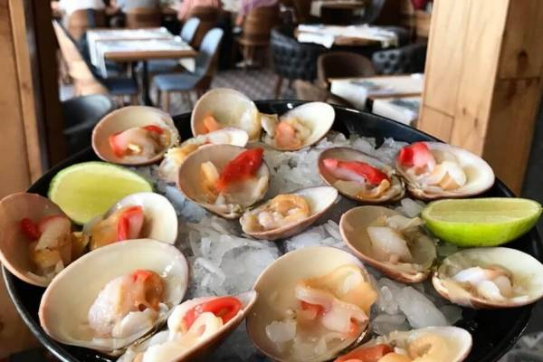 conchas finas restaurante la marea