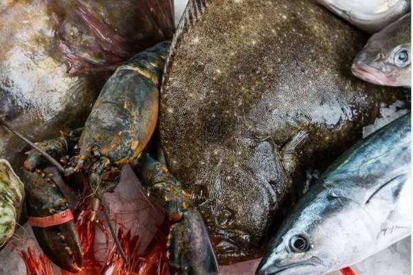 pescados e ingredientes restaurante la marea